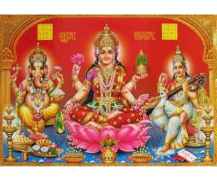 BEST RED BOOK ASTROLOGER IN BHOPAL +91-9041996896